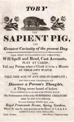 Feasting on the Unclean (Vintage Sapient Pig Advert)