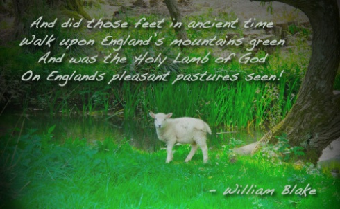Holy Lamb Seen, England Mountain Green