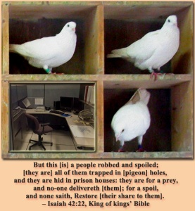 Trapped in pigeon holes