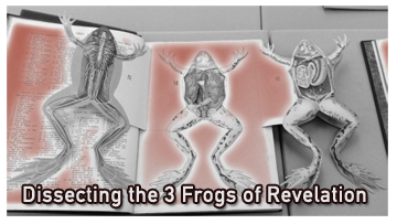 Dissecting3Frogs