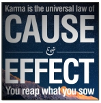 karma-reap-what-you-sow