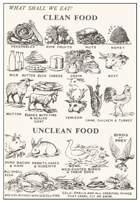 Clean and Unclean Foods