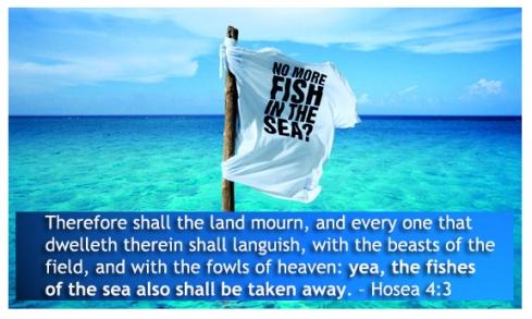 Hosea 4-3