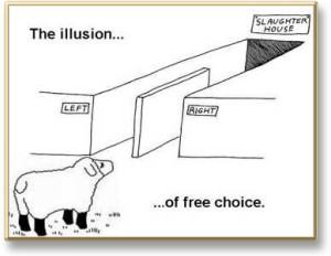 IllusionOfChoice