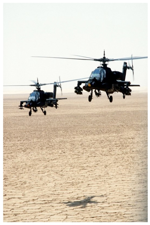 Helicopters like horses prepared for battle